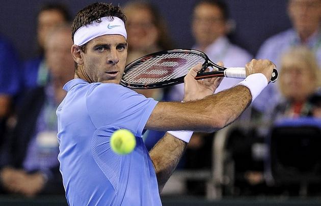 Del Potro dio el golpe y venció a Andy Murray — Davis