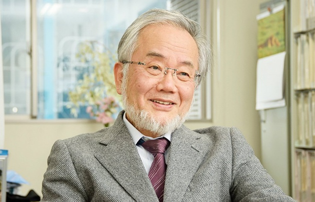 Otorgaron el Nobel de Medicina a Yoshinori Ohsumi
