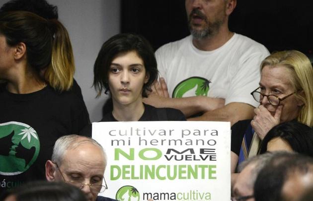 En Argentina se promulga ley de uso de cannabis — URUGUAY