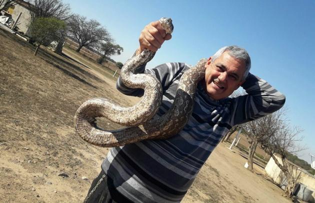 Capturan serpientes gigantes en una escuela de Córdoba